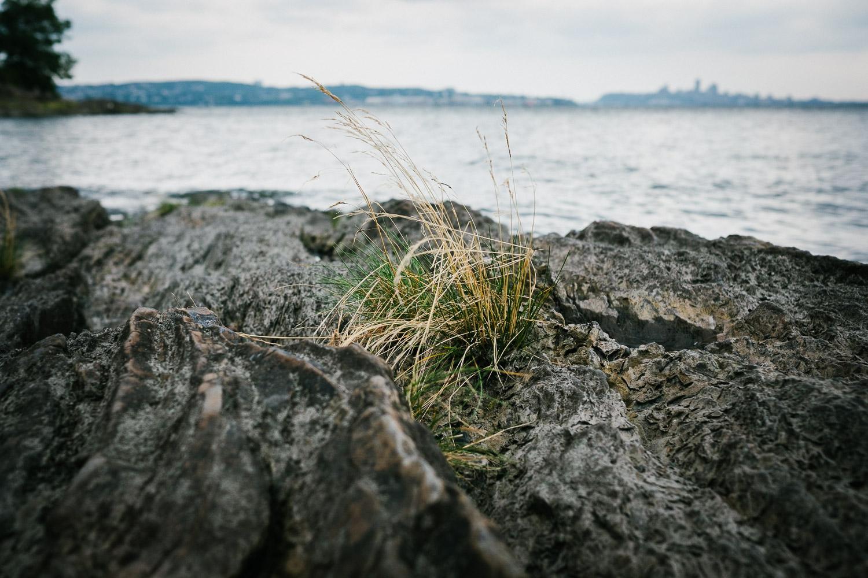 trip-to-ile-orleans-beach-rock-photo