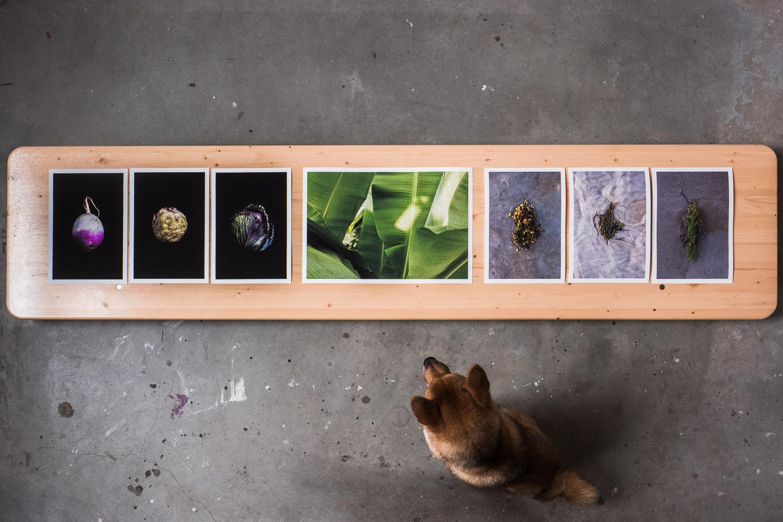 prints-page-by-alex-tran-photography