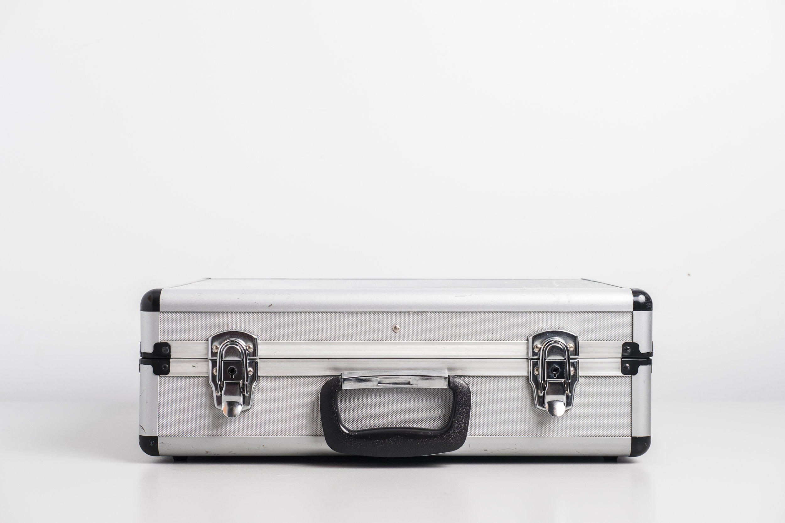 art-collaboration-by-montreal-insectarium-suitcase-with-insects