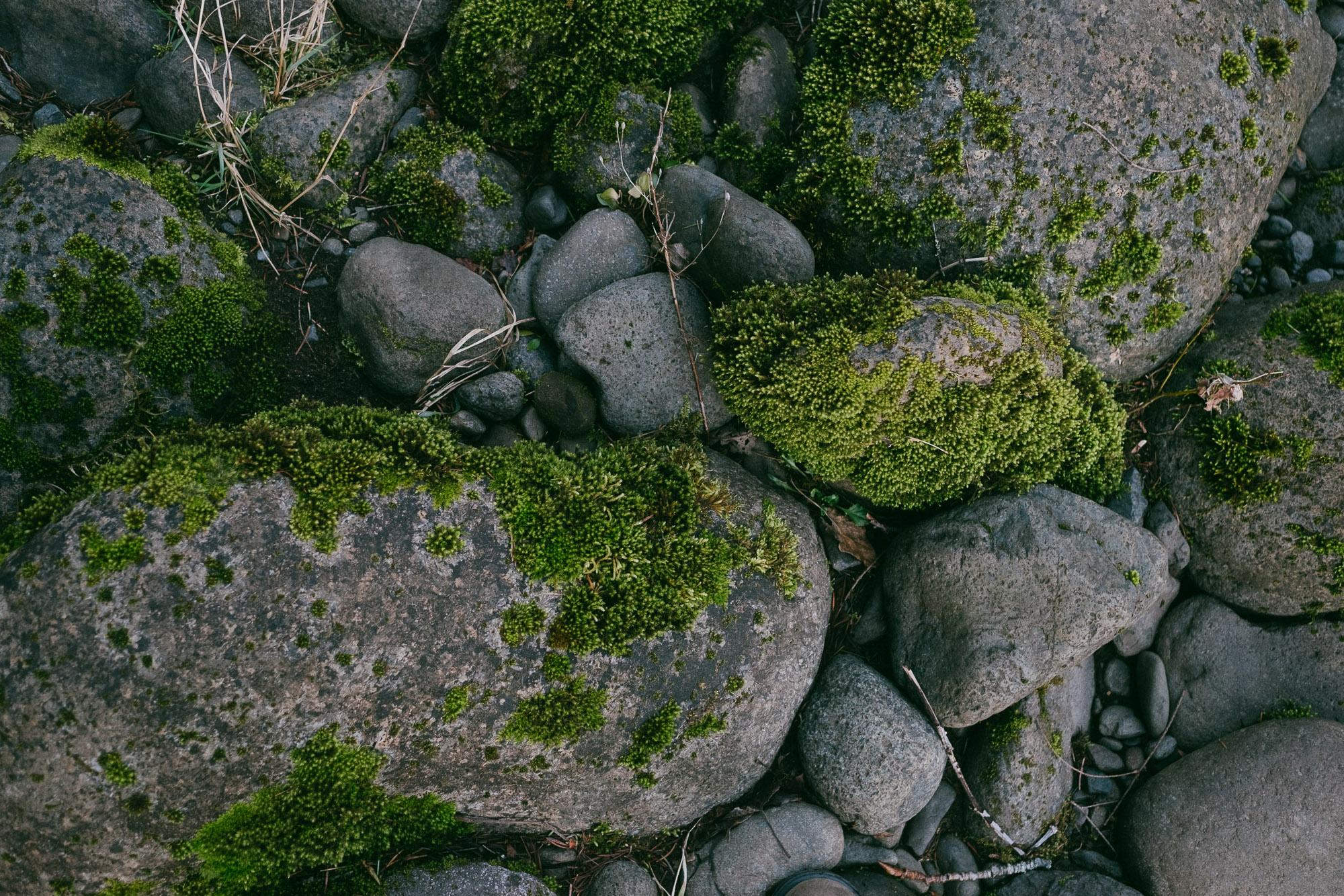 mossy-rocks-portland-oregon