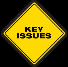 PMAT-logo-KEY-ISSUES.png