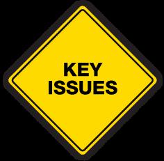 PMAT-logo-KEY-ISSUES-2.png