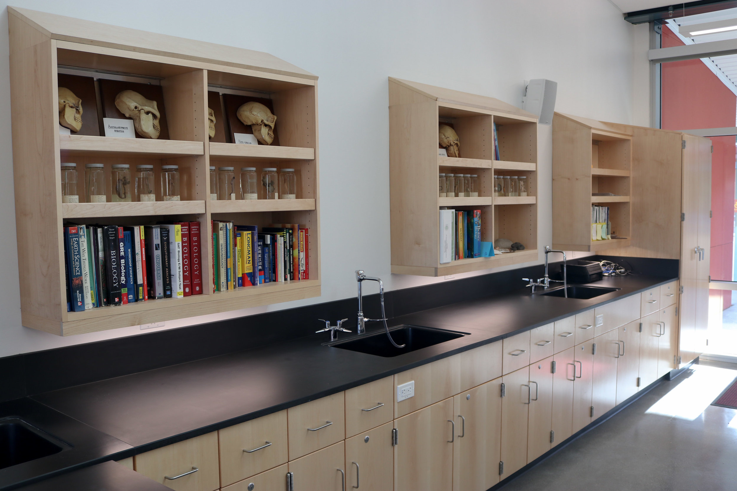 CHEMICAL RESISTANT MAPLE WOOD CASEWORK AND EPOXY COUNTERTOPS