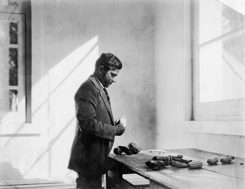 Tina Modotti, Pandurang Khankhoje in his laboratory, Chapingo, Mexico (ca. 1928)