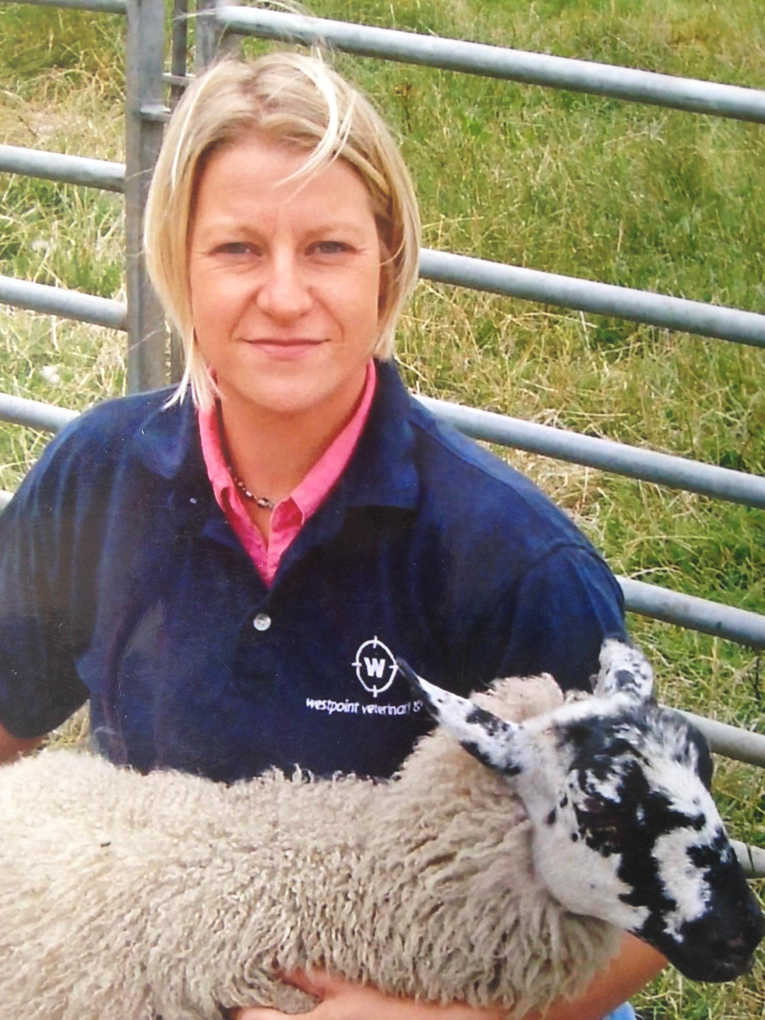 Sarah Tomlinson sheep photo_ (002).JPG