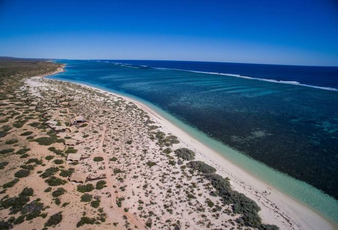 3714896-sal-salis-ningaloo-reef-australia.jpg