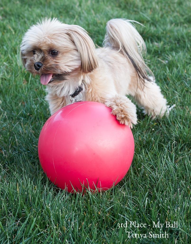 My Ball Tonya Smith 3rd.jpg