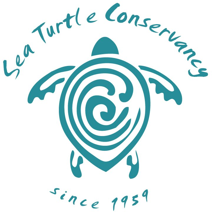 sea-turtle-conservancy
