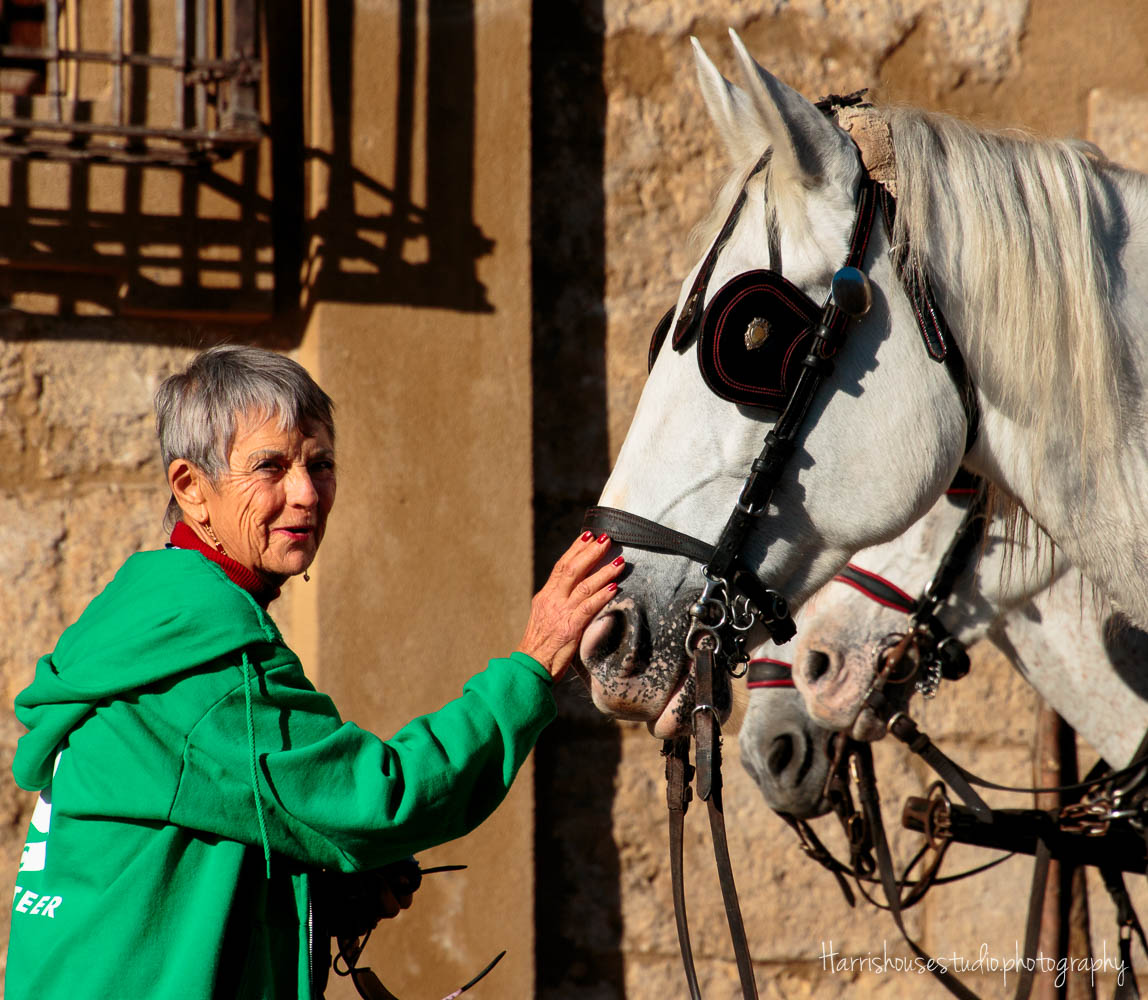 Louise R   This was my second trip with Mary Anne - Spain - it was such a fascinating country. Always love the animals, the music and the fun.