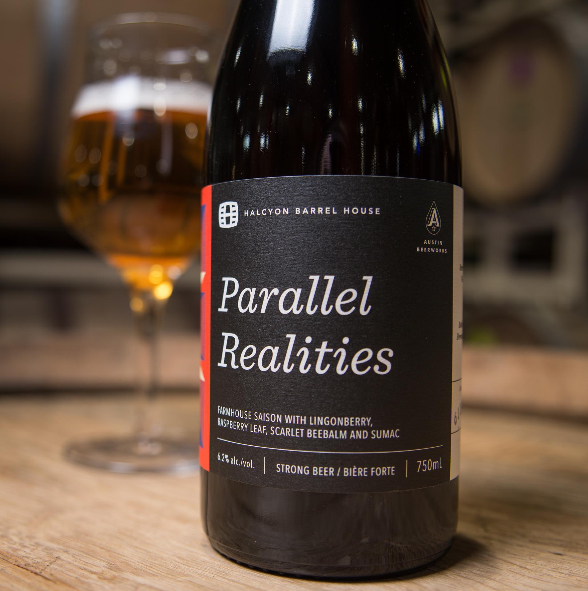 Halcyon Parallel Realities-7.jpg