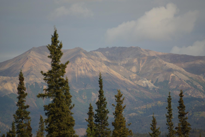 trees_mountains2.jpg