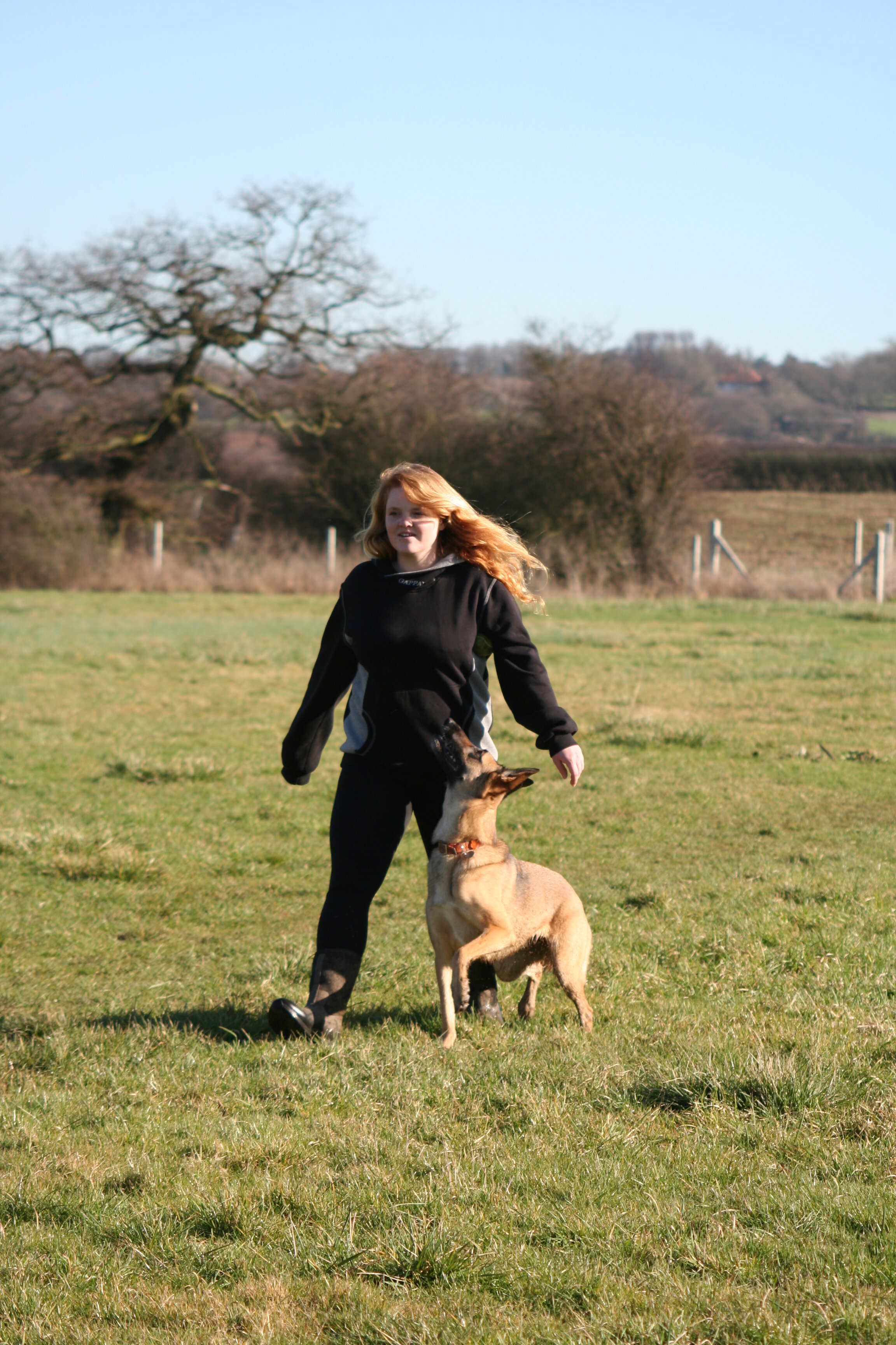 About Amey - I'd always wanted to become a qualified dog trainer & behaviourist and spent many years researching and reading as much about the profession that I could find! What once was a bucket-list dream became a reality when I became a fully accredited and qualified dog trainer under the Institute of Modern Dog Trainers and later joined The Pet Professional Guild.Before making this move, I had been working in an office and struggled daily to find someone reliable and trustworthy to walk my own dogs, let alone look after them for longer periods of time if I needed. After all, putting a member of your family in someone else's hands and trusting them to look after them as you would yourself is difficult to find.After being let down again and again, I really focused on turning my dream into a reality by getting my qualifications and starting my own business so that I could give people a service I had missed out on.I hope that with my experience, reliability, passion and knowledge I can continue to make a difference to the dogs I meet and give people the tools they need to manage their pets and make their dog-owning experience more enjoyable and less stressful.