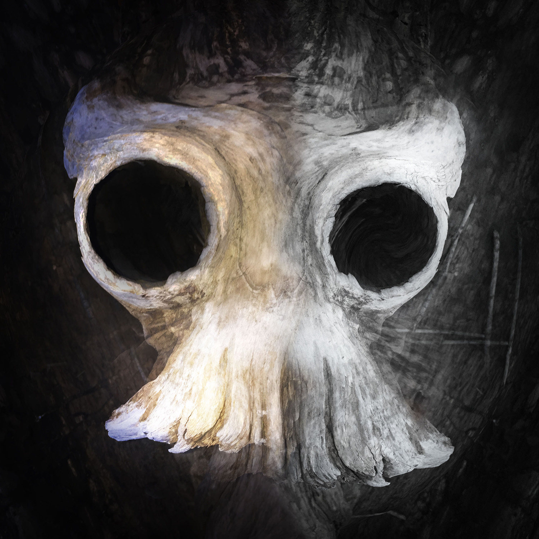 drift Skull_sm.jpg