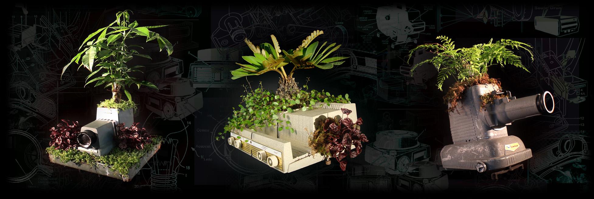 plantjectors3upsm.jpg