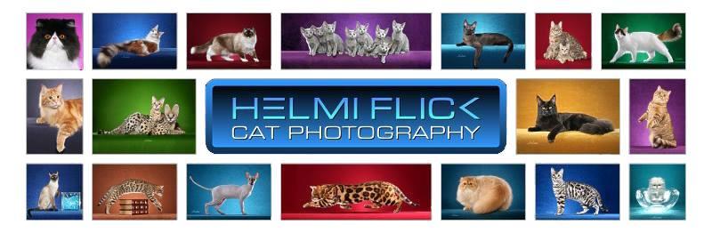 Helmi Flick Photography_white background.jpg