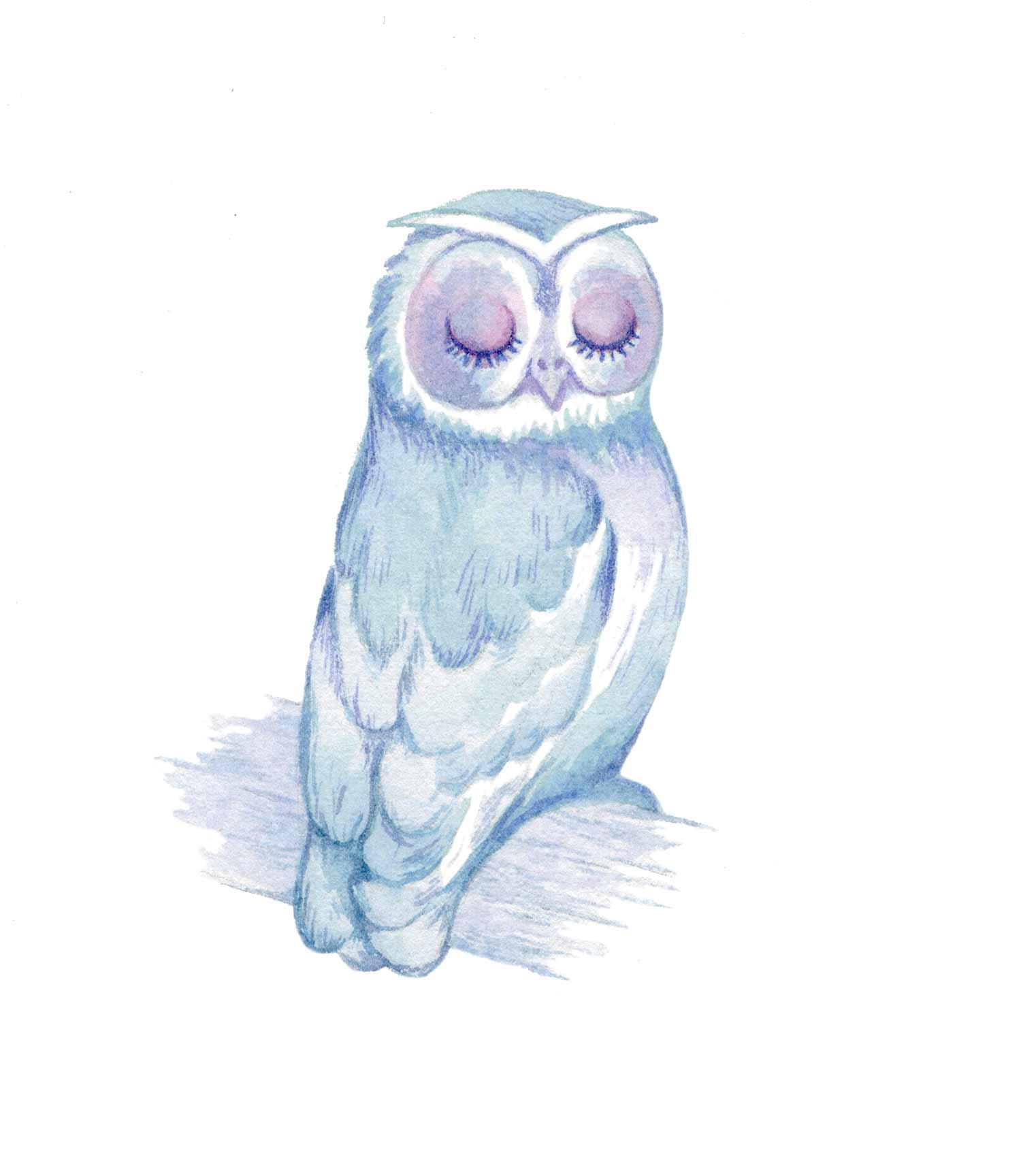 web_owl_spots_01.jpg
