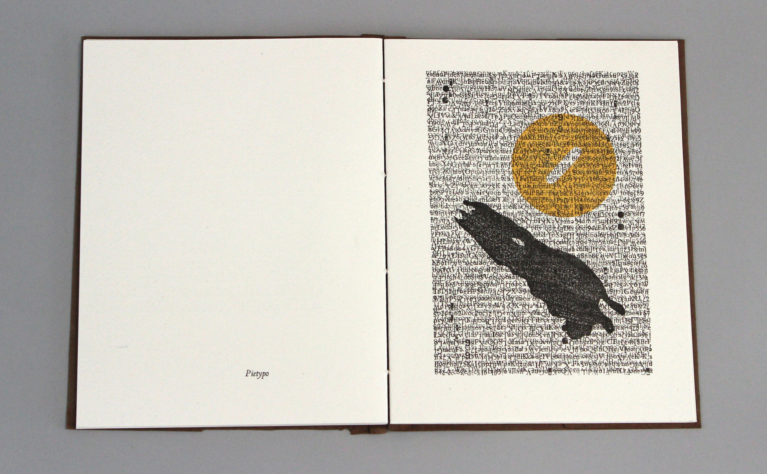 IMG_7985_babel-book-eric.jpeg