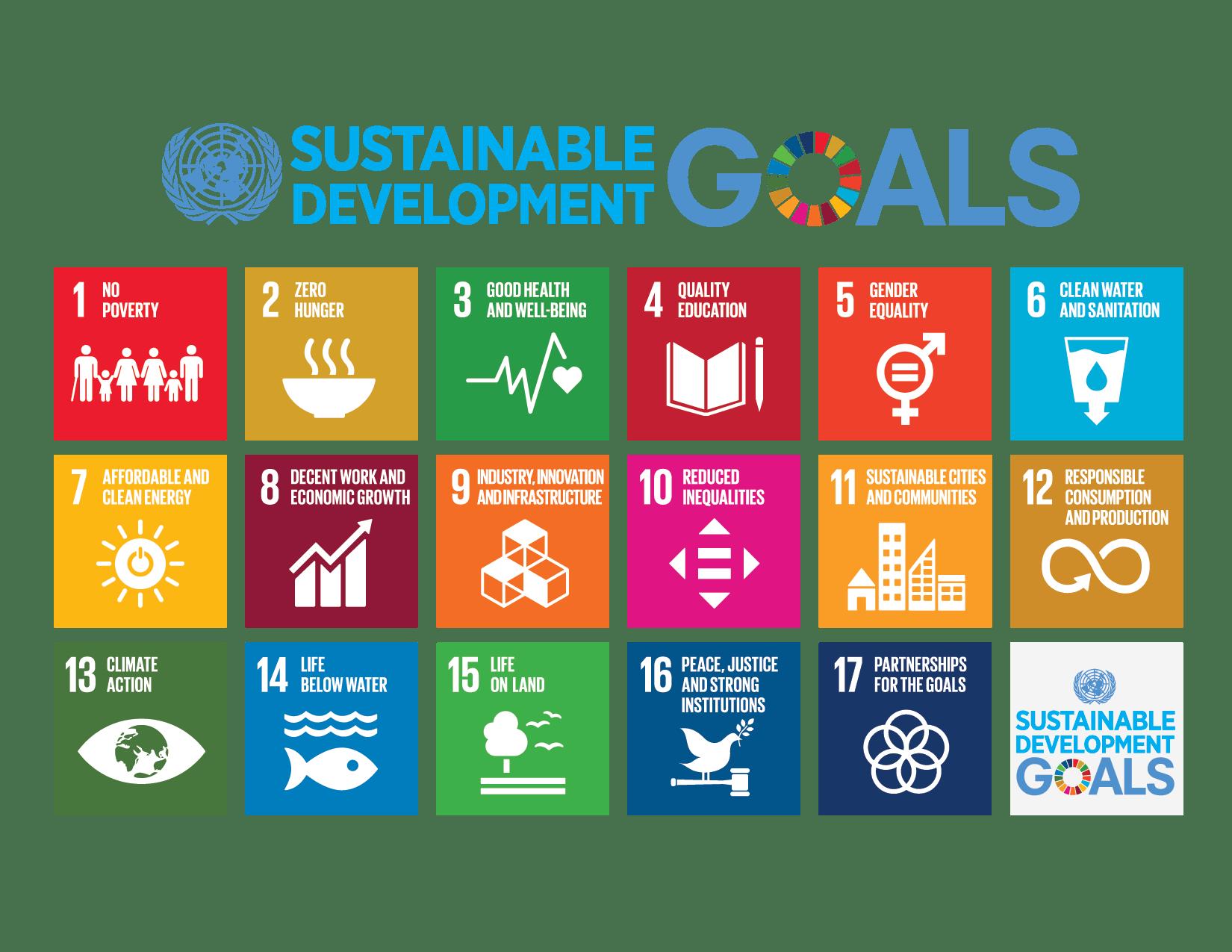 E_2018_SDG_Poster_with_UN_emblem.png