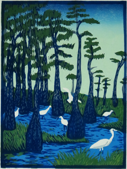 EDGE OF A CYPRESS SWAMP