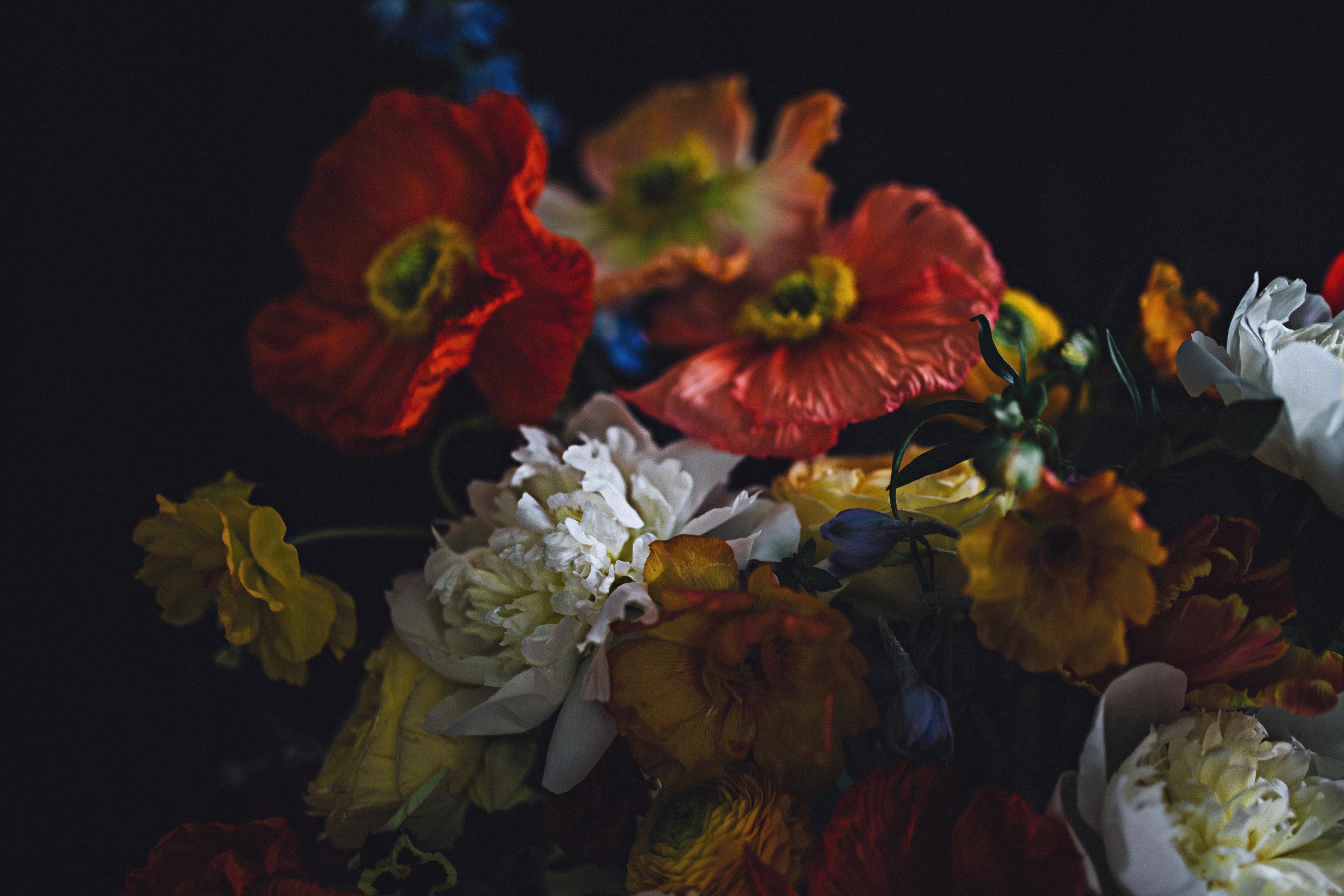 floral_sr40.JPG