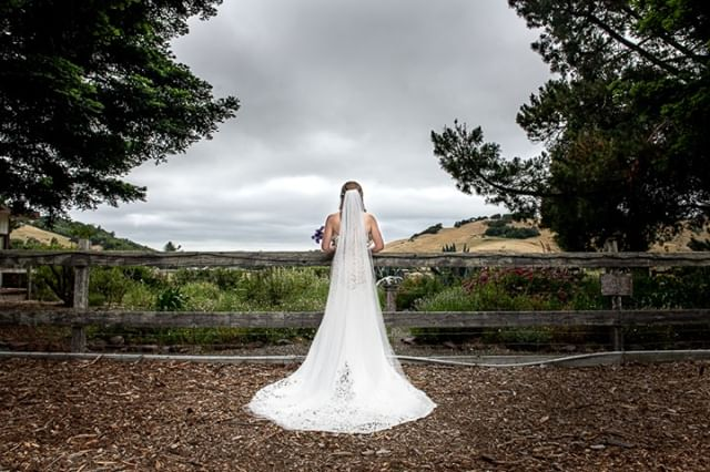 Stunning dress in an incredible setting in Nicasio Hair and makeup by Shannon Le  Venue : Rancho Nicasio Restaurant & Bar . . . . . . . . . . . . .#weddingphotography #weddingphotographer  #weddinginspiration #weddingseason #weddingphotos #bride  #realwedding #weddingideas #weddingfashion #modernwedding #weddingpictures #weddingflowerinspiration #weddinginviteinspiration #destinationweddings #happilyeverafter #weddingdress #chicwedding #herecomesthebride #bridalparty  #nikon #bridalphotos #theknot #weddingchics #weddingwire