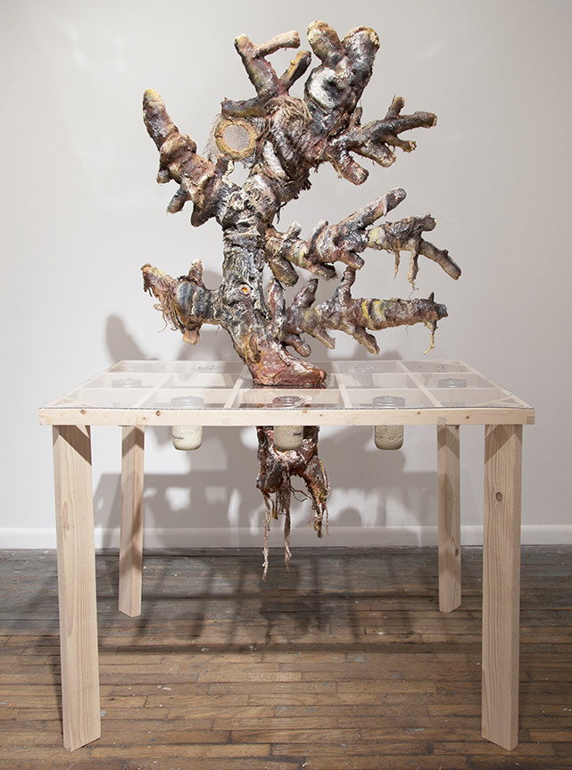 S.E. Nash.  The stability of sourdough ecosystem during   time   is debated,  70 in. x 48 in. x 36 in. Wood, polyurethane foam, cardboard, sculptamold, burlap, acrylic paint, acrylic sheeting, glass jars, sourdough starters