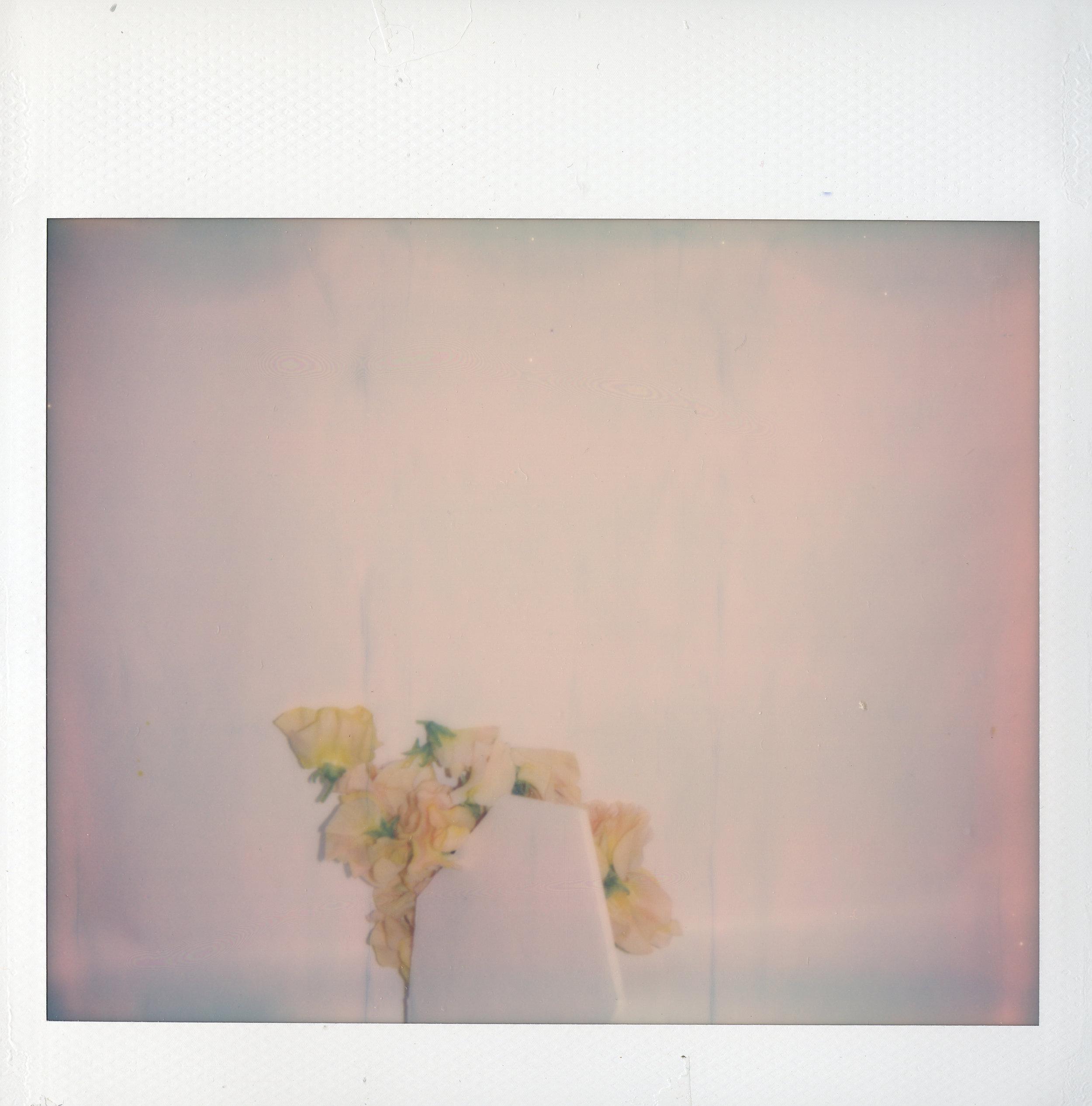 """In Memoriam   Polaroid print  4"""" x 4 1/10""""  2018"""