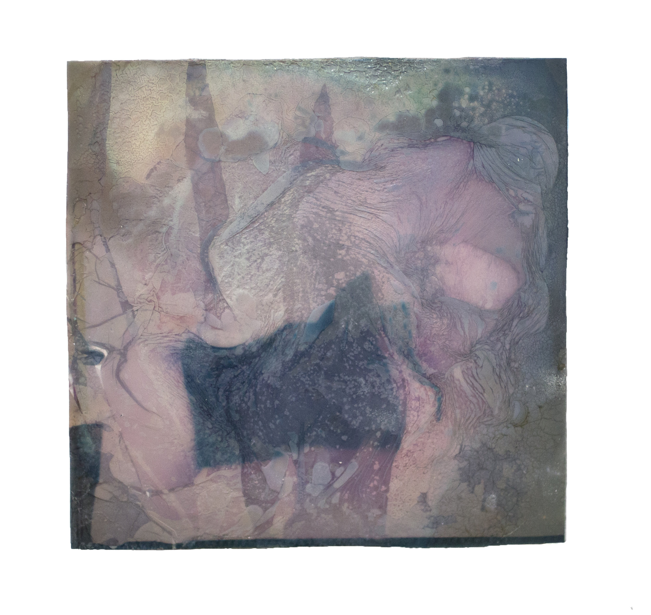 "Seemingly swimming, object search   Polaroid film, grapeseed oil, collage   3"" x 3""  2019"