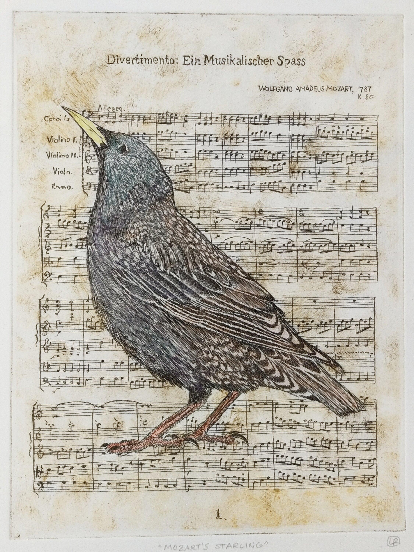 MozartsStarling.jpg
