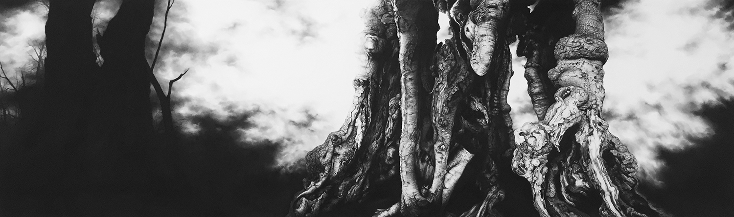 Burnham Beeches  -  65cm x 200cm - Charcoal & Conte,paper mounted on wood - 2015
