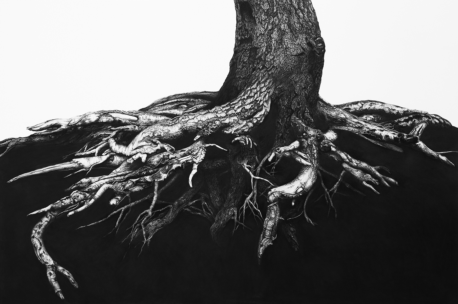 Wimbledon Common  -  100cm x 150cm - Charcoal & Conte, paper mounted on wood - 2014