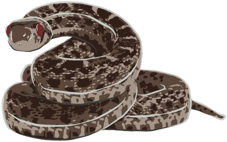 snake01-01.png