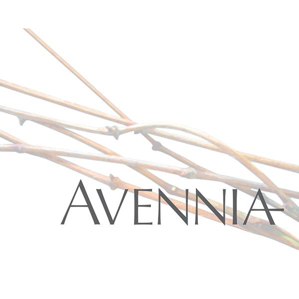 Avennia-Winery.png