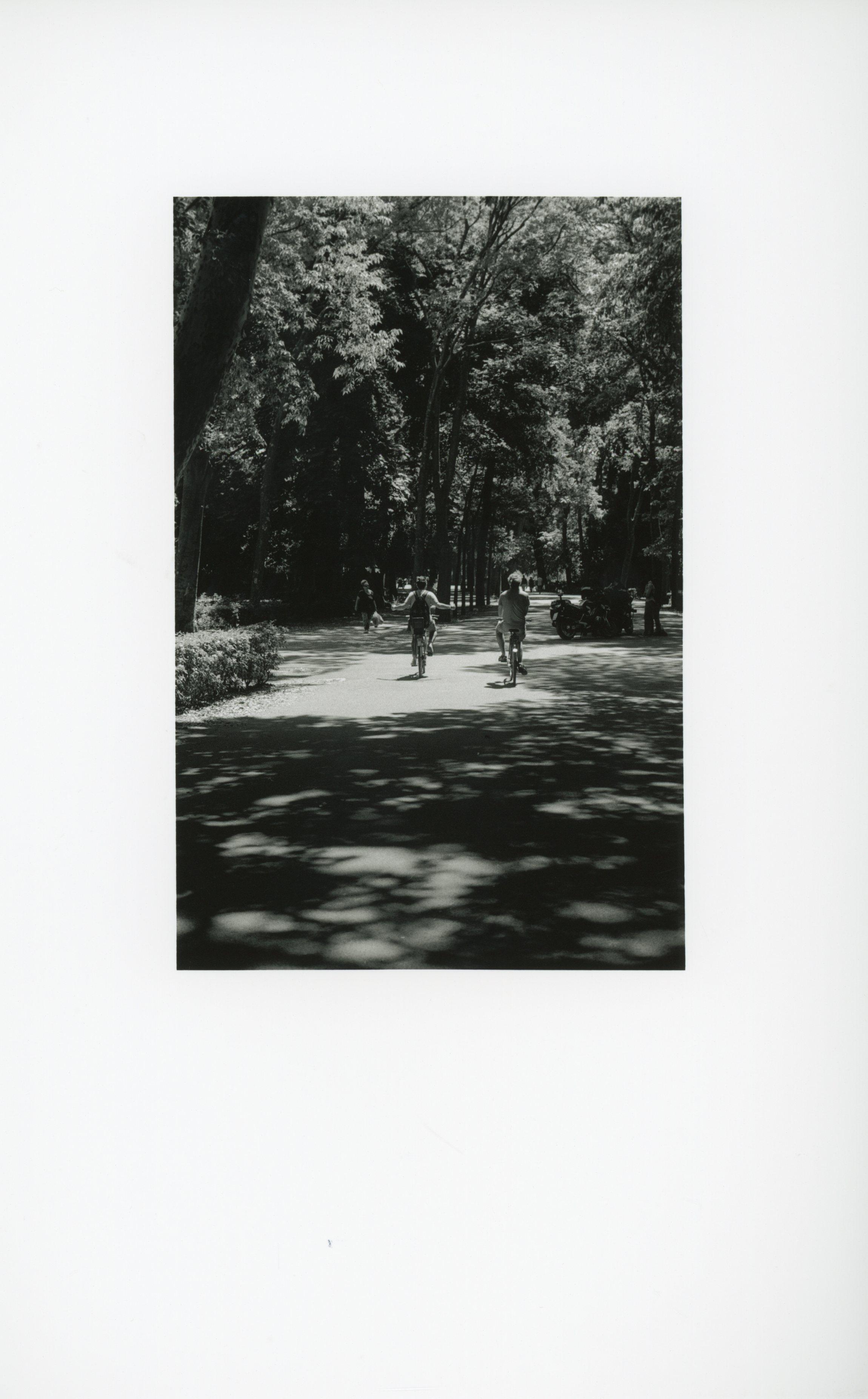 scan026.jpg