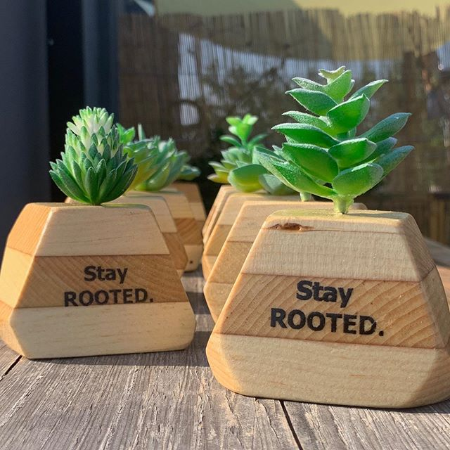 Hump Day reminder... #stayROOTED 🌱  When we're #ROOTED we are living out our deepest truths.🙏🏾 For me, it's simple... I'm a teacher, a hostess, and a play date/plus one. ✨I teach balance and authenticity, I host unique healing experiences, and I connect with #truthseekers on their life's journey... and we have fun!👍🏾 You ready to get ROOTED? 🌱 My last #Summer Soiree is this Sat 4-6pm @HealHaus, and includes: outdoor, open-level #yoga + #lifecoaching, yummy smoothie + your own sample of the @Rooted_Well Plan📝  Oh and these cutie patootie 🌱blocks are my latest #branding project. You knocked these outta the park @carldehendin 👏🏾🤩 #livewell #playwell #balance #beyou #innerG #healing #BKallday #wellnesscoach