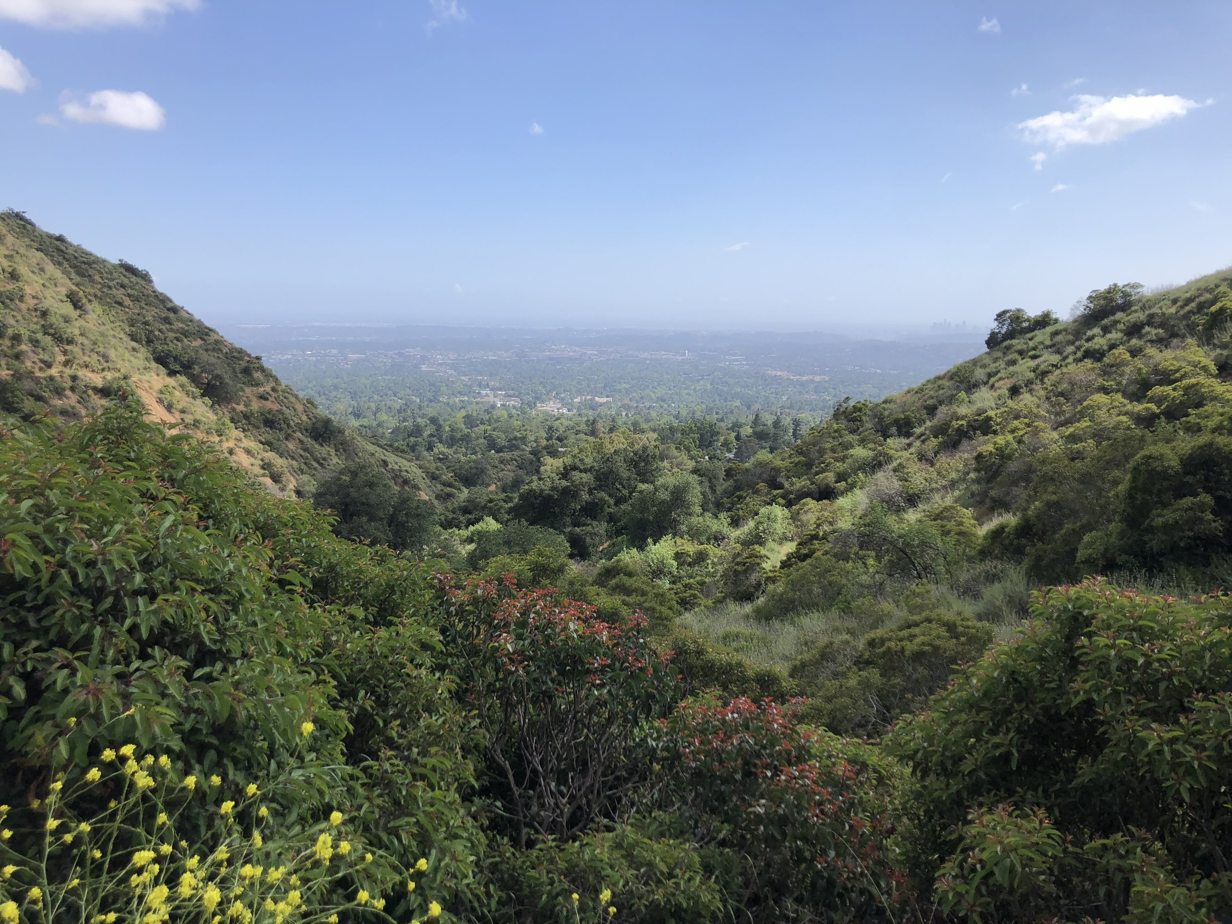 hiking in monrovia the other day after some rain!