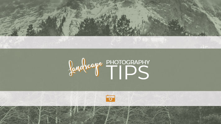 Photographer & Designer - Crowsnest Pass, Alberta - Pixels by Tina