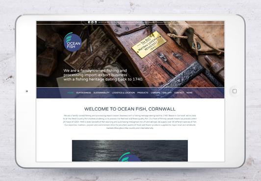 ocean-fish-webpage-03.jpg