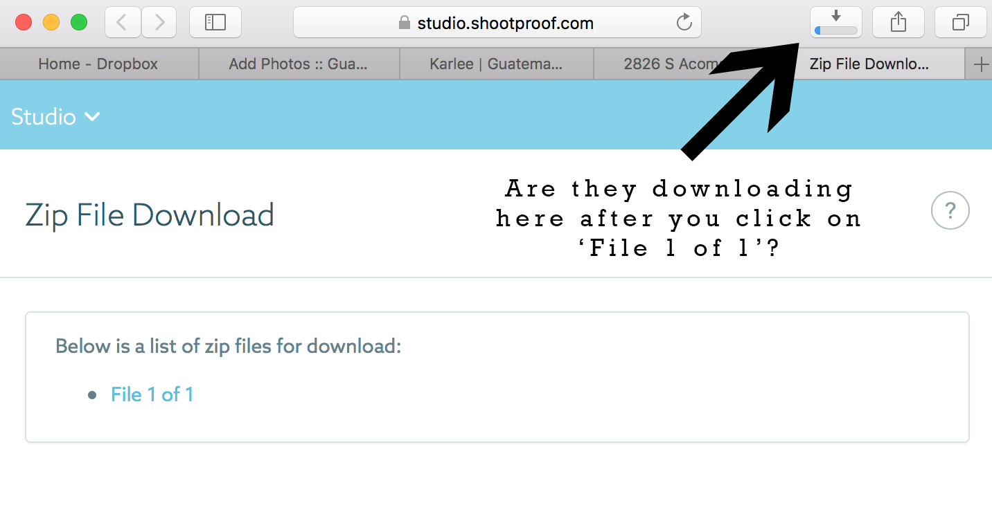 Instructions on Downloading ZIP .png