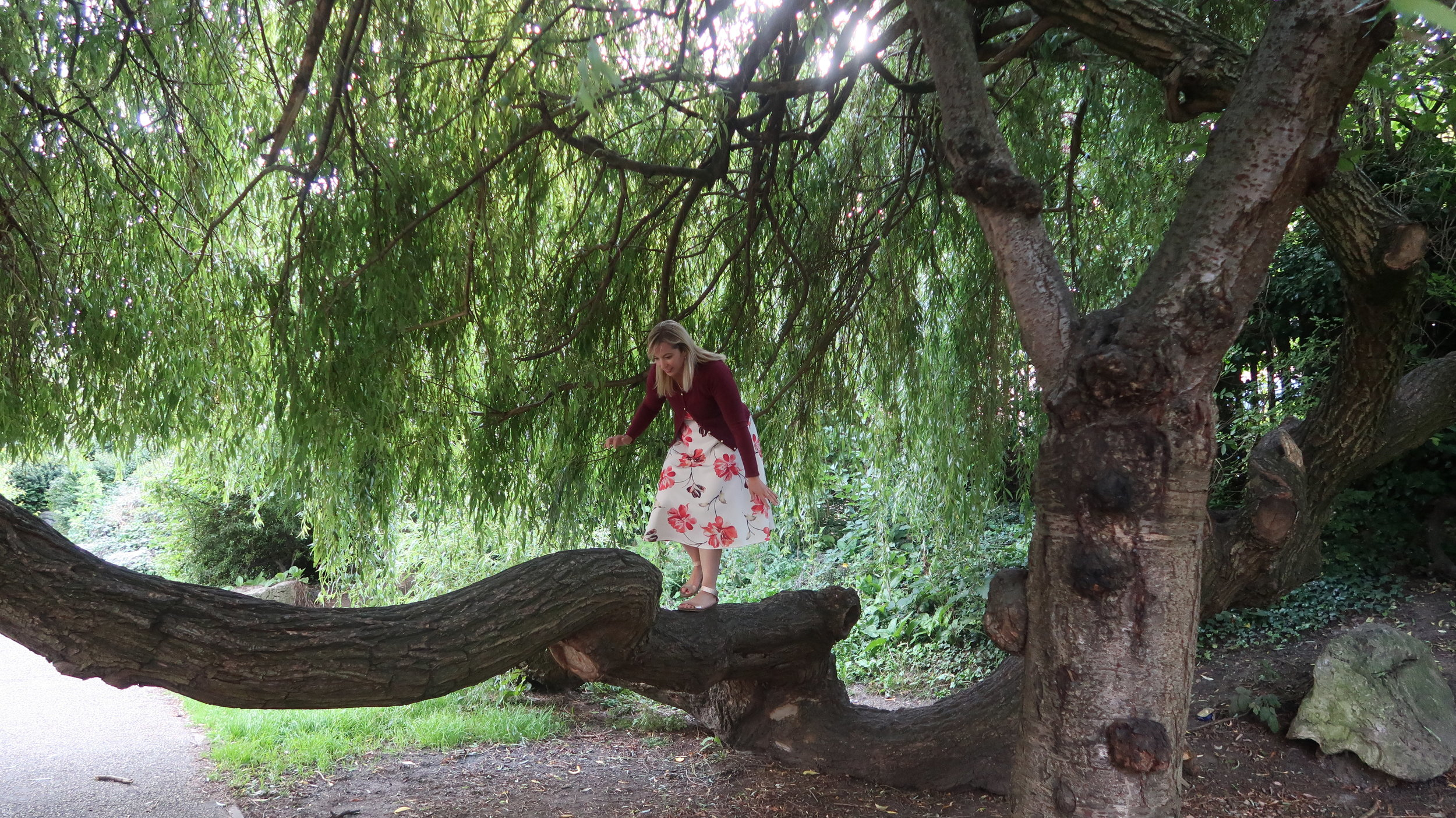 Who would've thought climbing trees would bring me so much joy?!