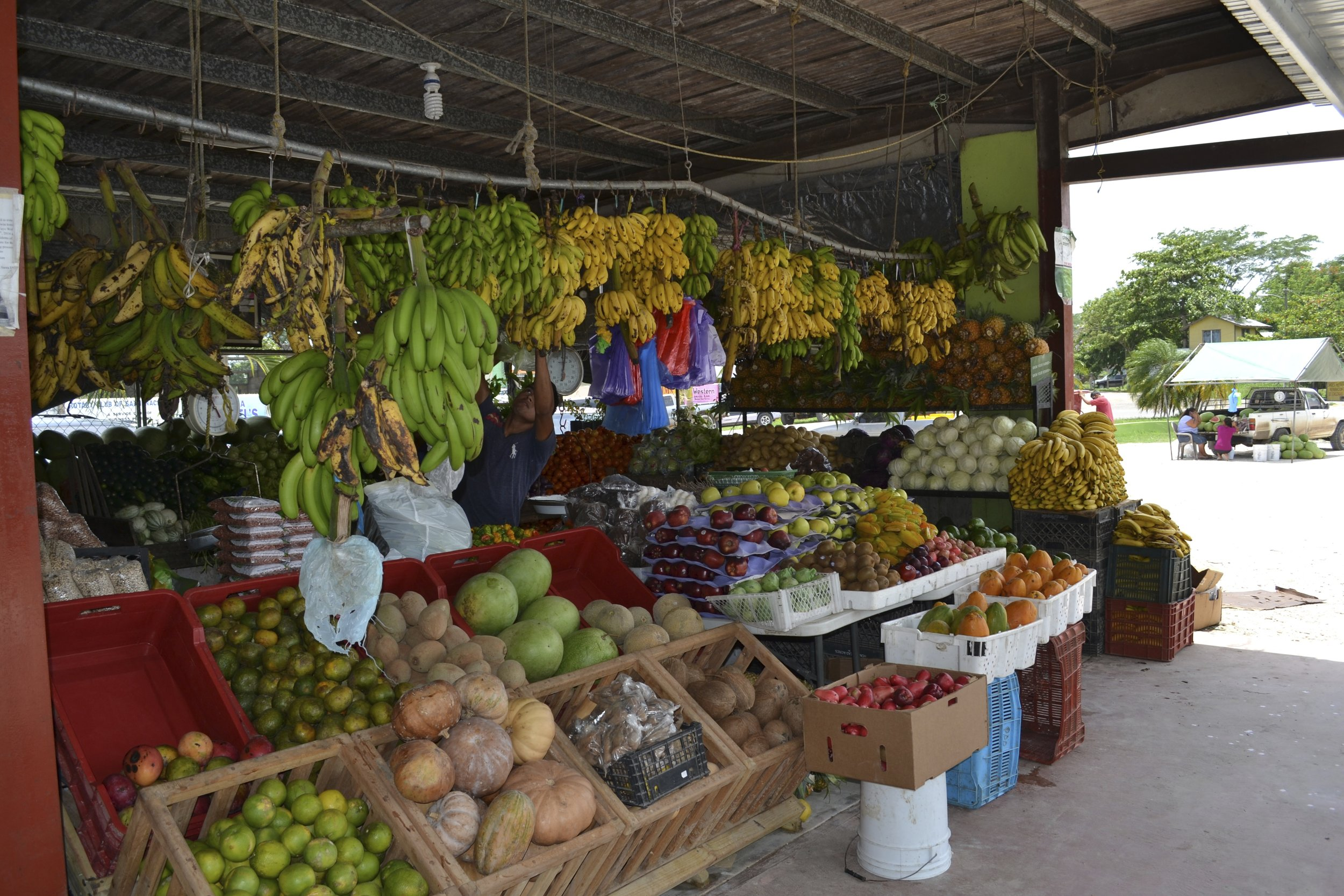 Fruit Stand in San Ignacio, Belize