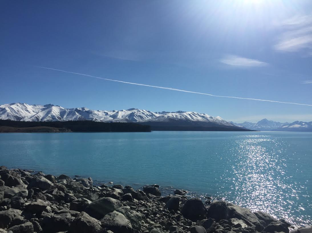 Lake Pukaki is fed by melted ice, so it has an unusual color (Photo Credit: Caitlin Rovner)