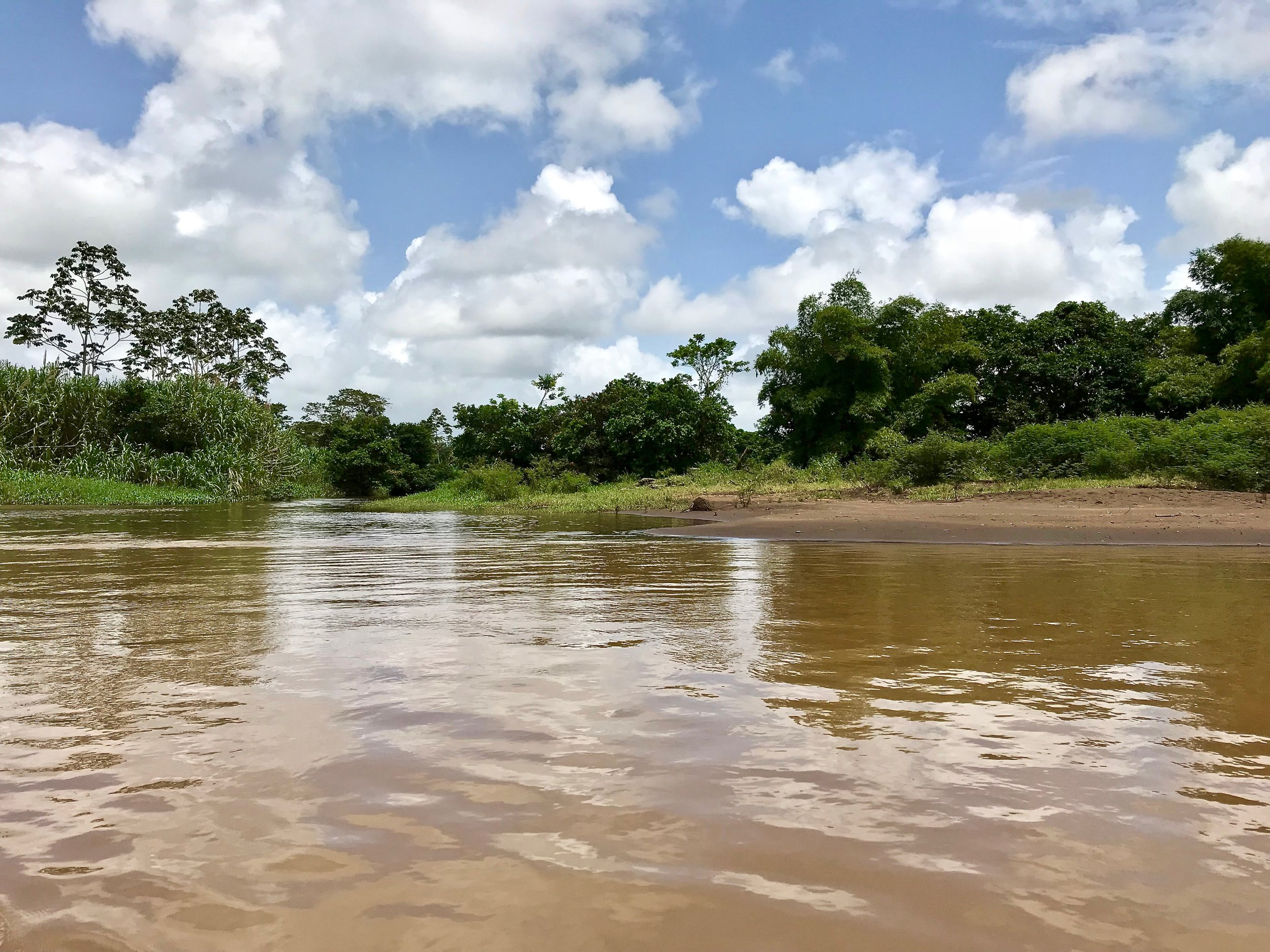 Canal of Tortuguero National Park