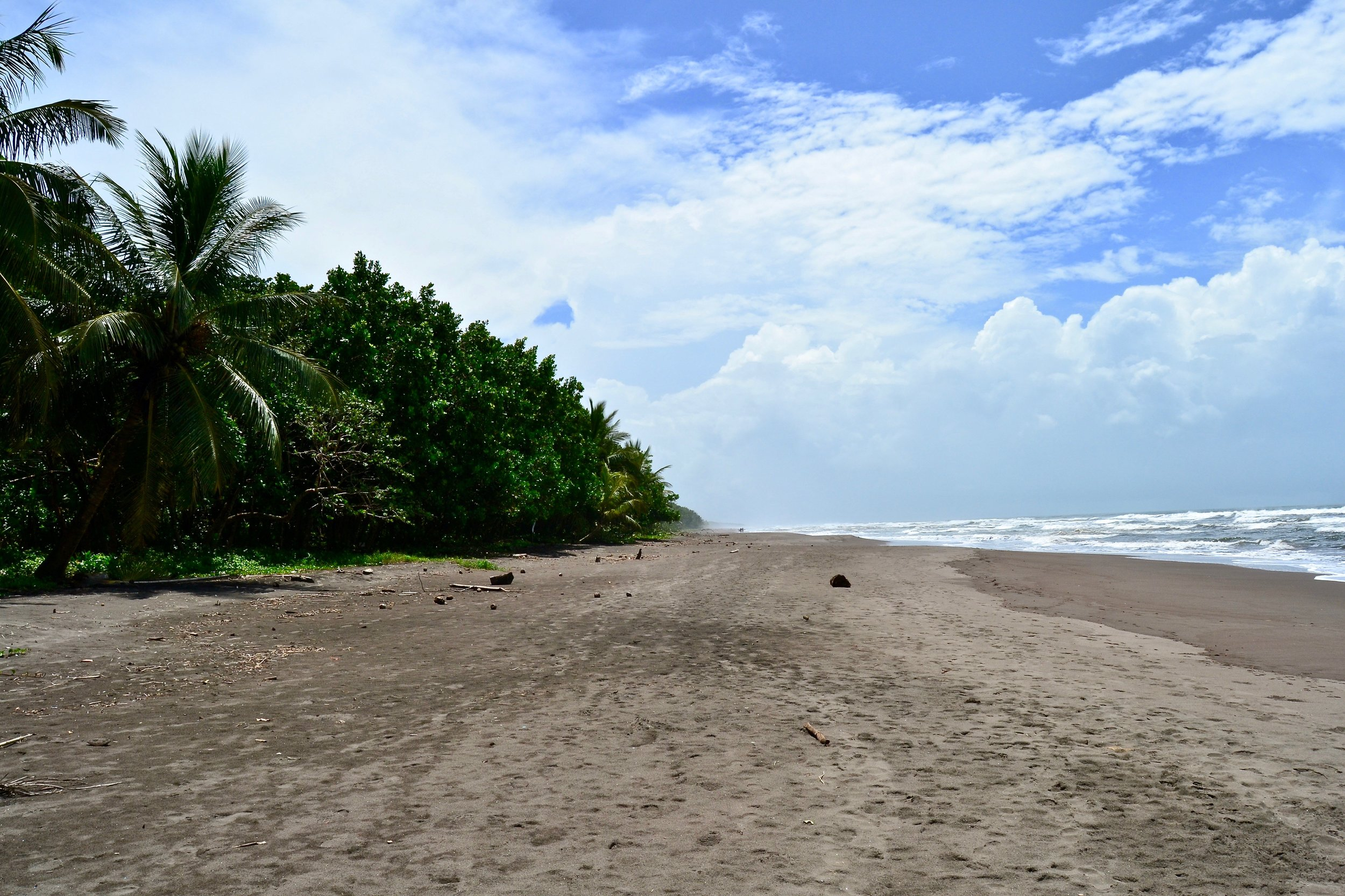 A view of the coast of Costa Rica in Tortuguero National Park