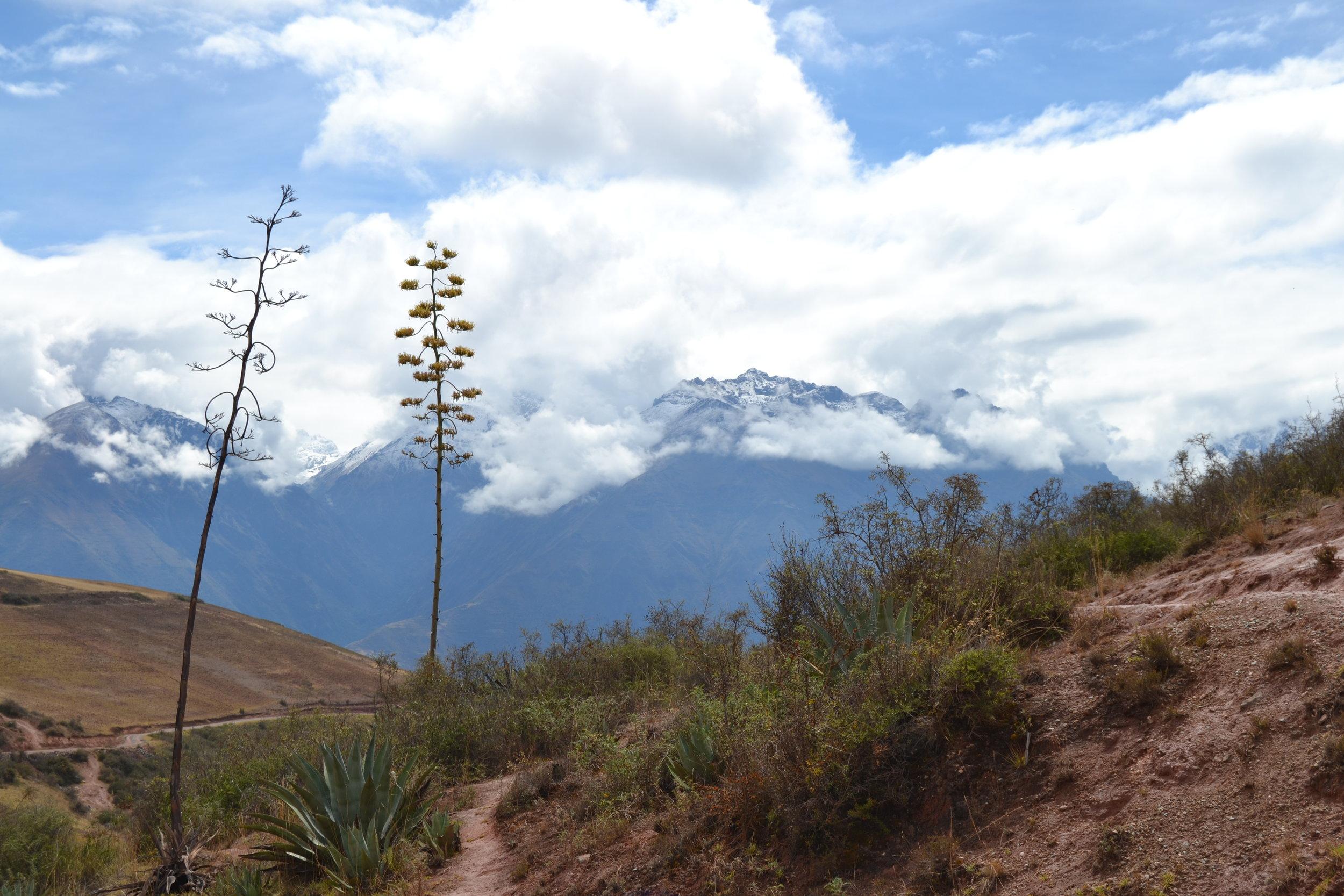 Peru Sacred Valley.jpg