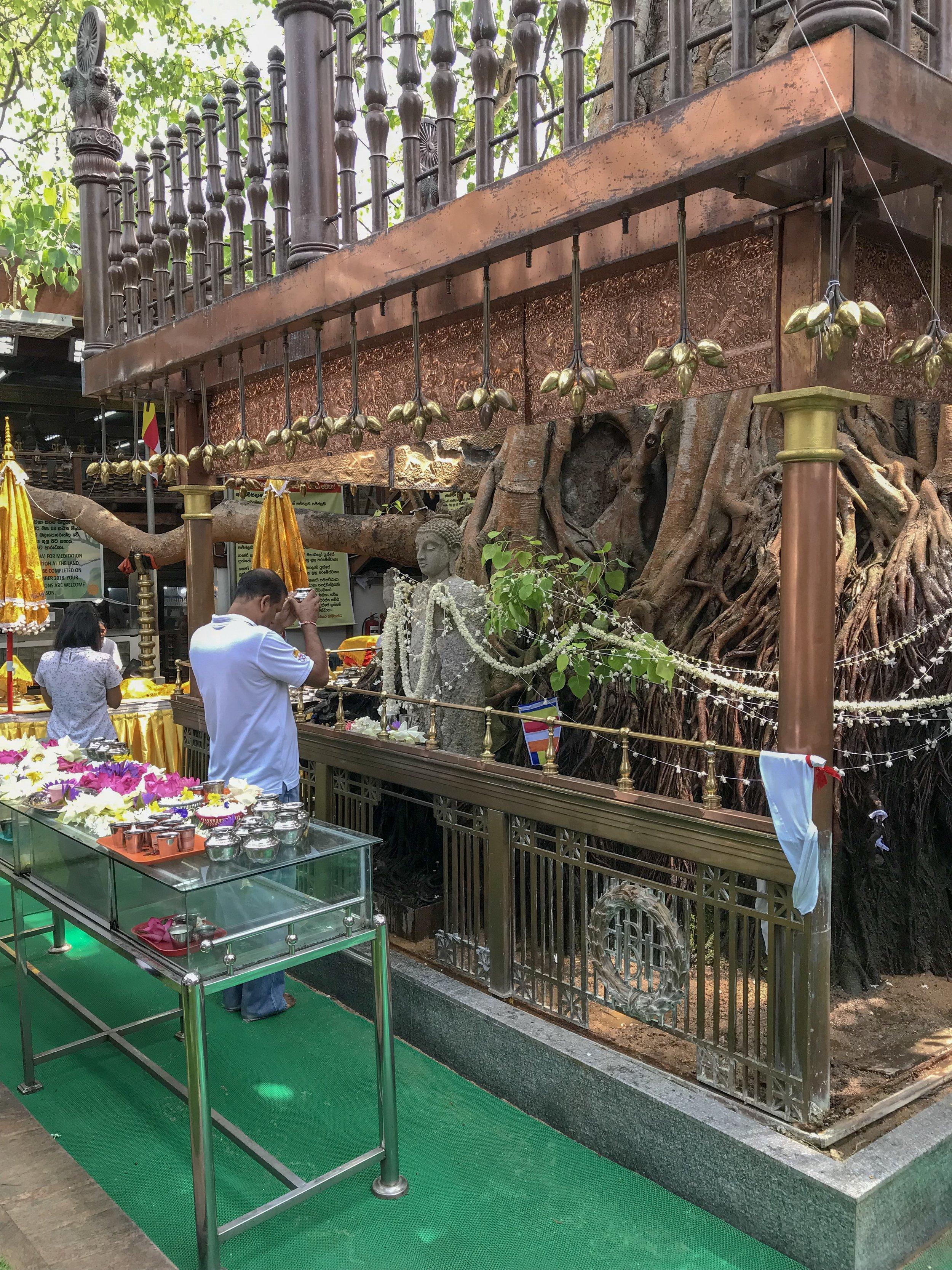 Bodhi Tree Altar
