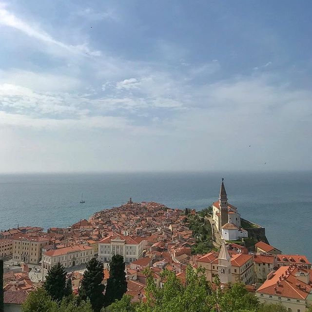 Piran, Slovenia is an absolutely beautiful city on the Slovenian coast of the Adriatic Sea.  I was thoroughly impressed by its scenery, history, and sites.  Slovenia is definitely a country in my Top 10 list.  It has exceeded all my expectations, and I'm now actually thankful that I got refused entry 6 years ago because of a stupid mistake.  That mistake allowed to make a return and see a lot more of the country than I would have seen back in 2013.  It just goes to show that everything happens for a reason. #europe #slovenia #piran #travel #travelphotography #landscapephotography #landscape #history #perfectweather #fate #inspirational #adriaticsea