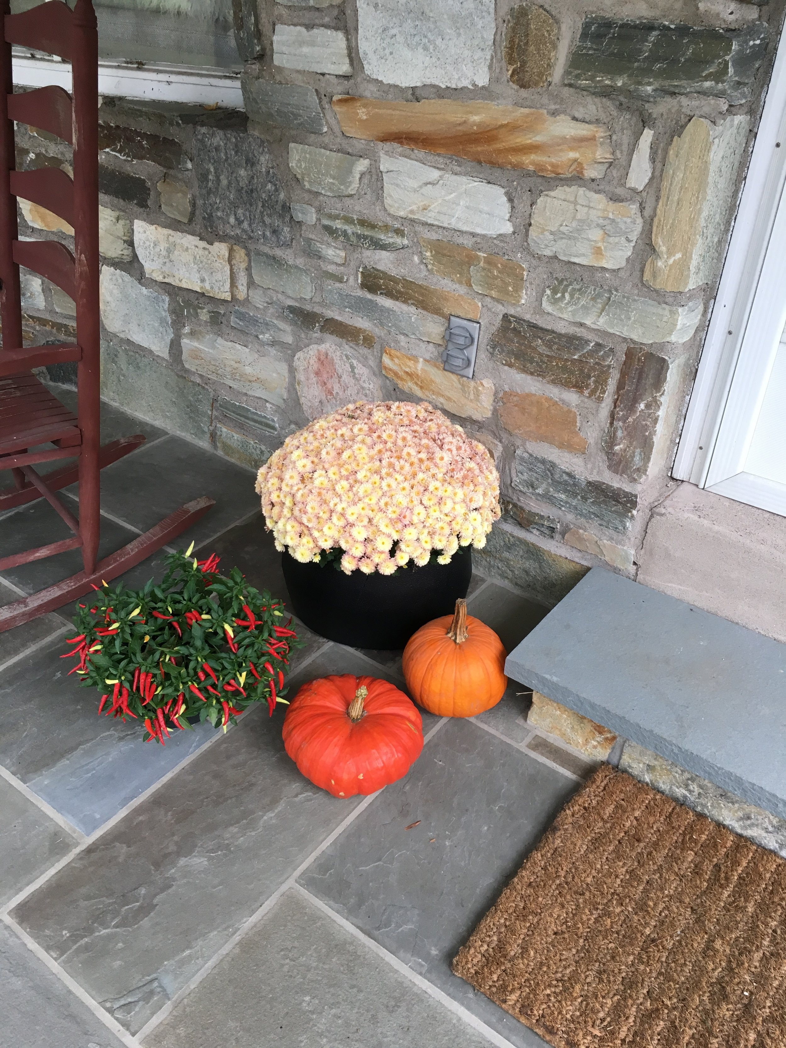 Christening the bluestone porch with the first of many pumpkins!
