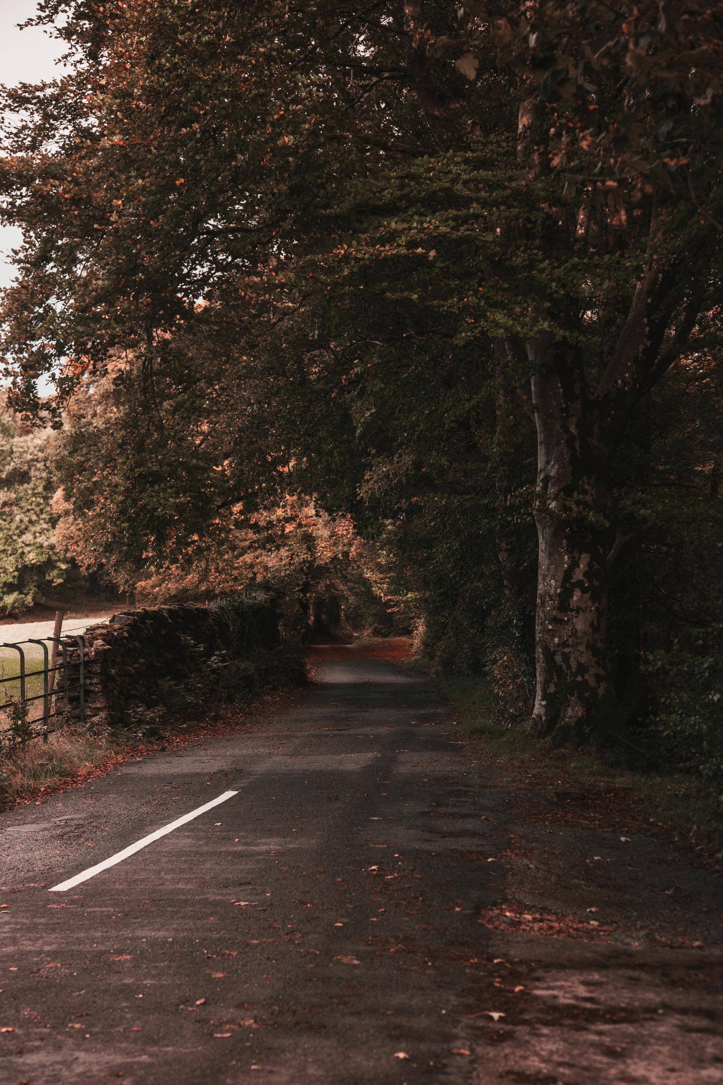 Lake-District-6.jpg