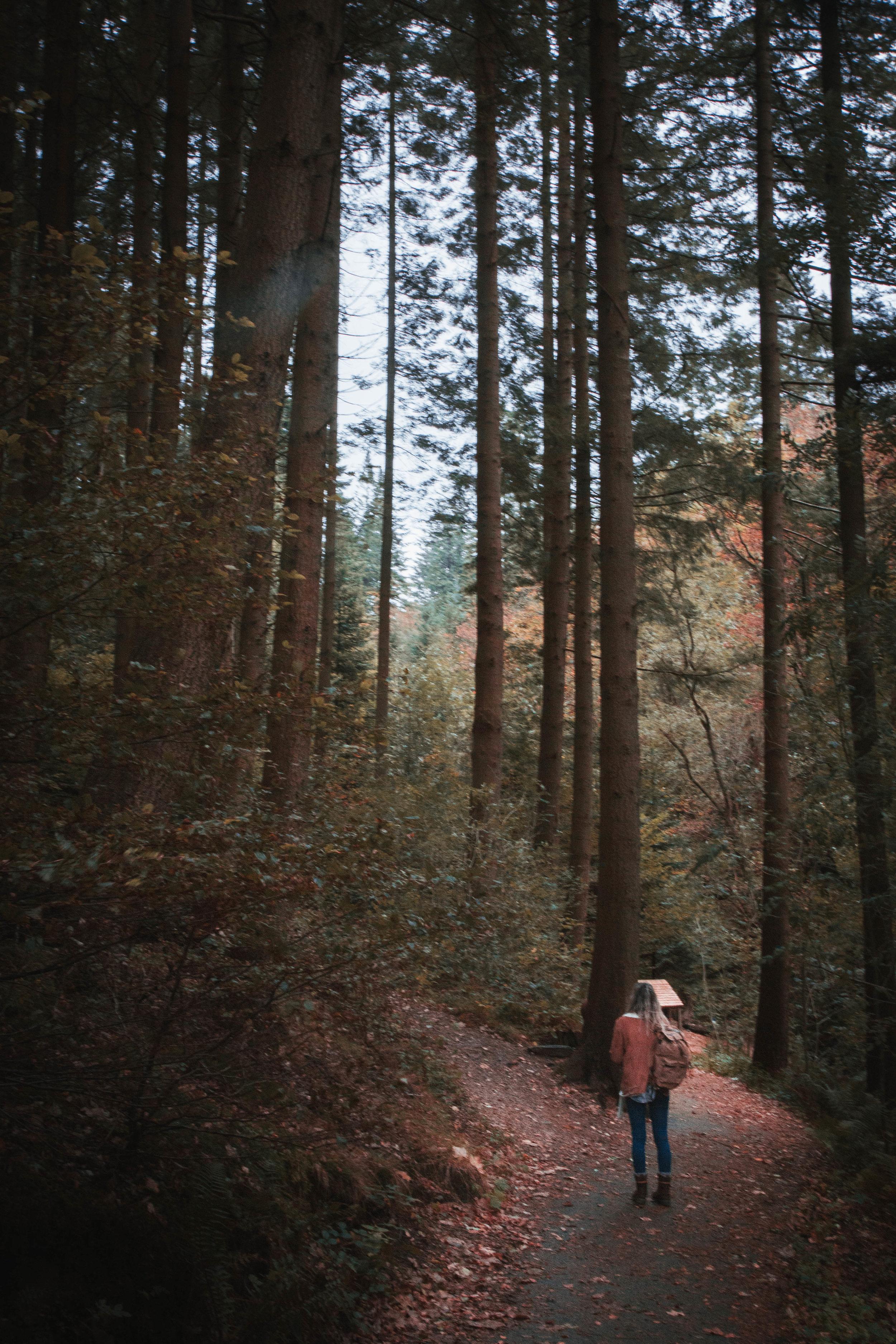 Lake-District-33.jpg